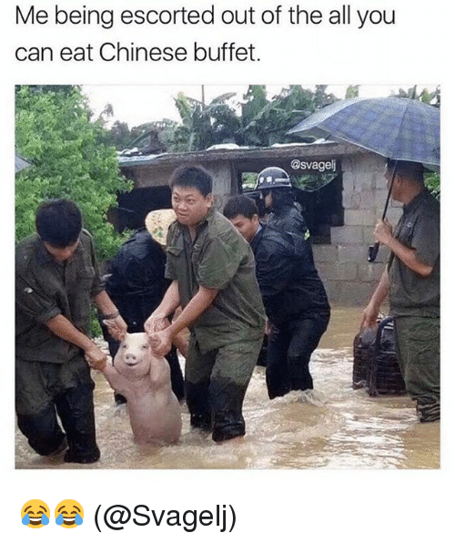 Memes, Chinese, and The All: Me being escorted out of the all you  can eat Chinese buffet  @svagel 😂😂 (@Svagelj)