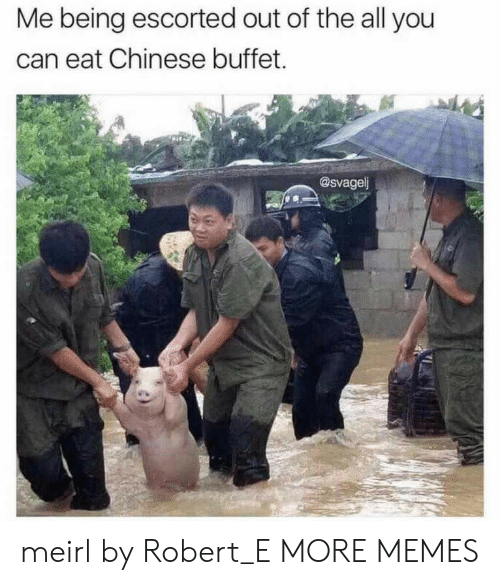 Dank, Memes, and Target: Me being escorted out of the all you  can eat Chinese buffet.  @svagel meirl by Robert_E MORE MEMES