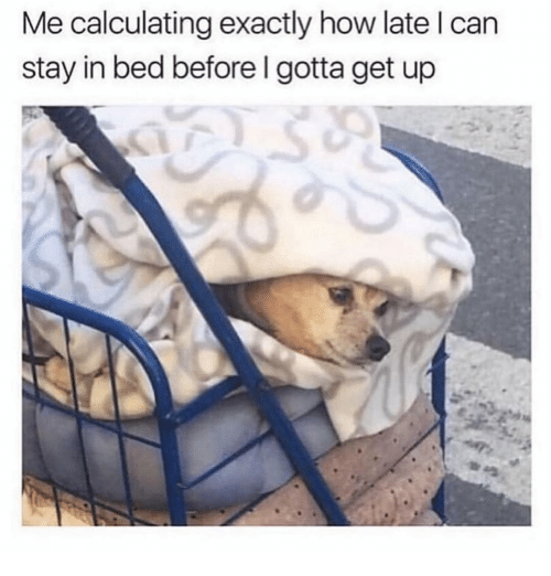 Girl Memes, How, and Can: Me calculating exactly how late I can  stay in bed before I gotta get up