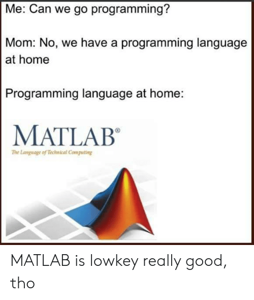 Good, Home, and Lowkey: Me: Can we go programming?  Mom: No, we have a programming language  at home  Programming language at home:  MATLAB  The Language of Technical Computing MATLAB is lowkey really good, tho