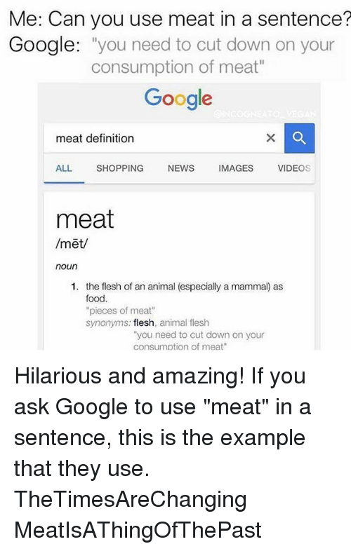 Memes And Ask Me Can You Use Meat In A Sentence