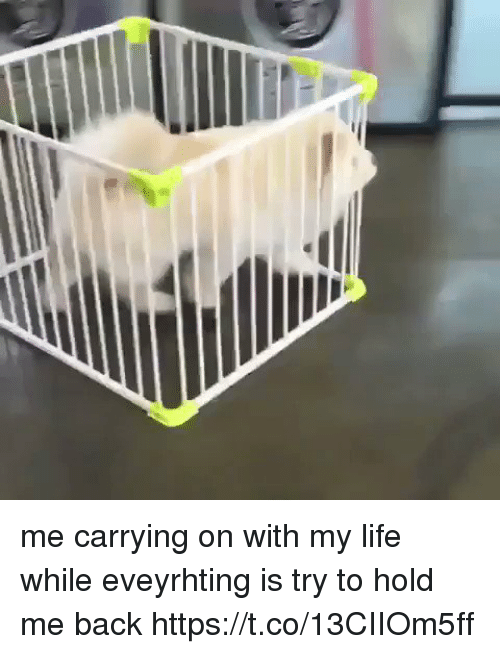 Life, Girl Memes, and Back: me carrying on with my life while eveyrhting is try to hold me back https://t.co/13CIIOm5ff