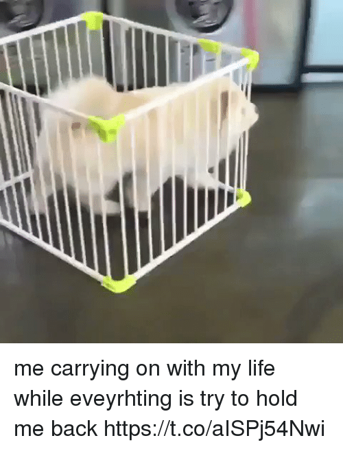 Life, Girl Memes, and Back: me carrying on with my life while eveyrhting is try to hold me back https://t.co/aISPj54Nwi