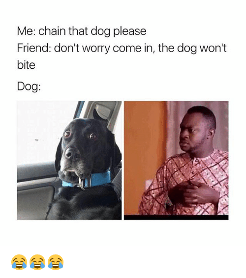me chain that dog please friend dont worry come in 20238716 me chain that dog please friend don't worry come in the dog won't