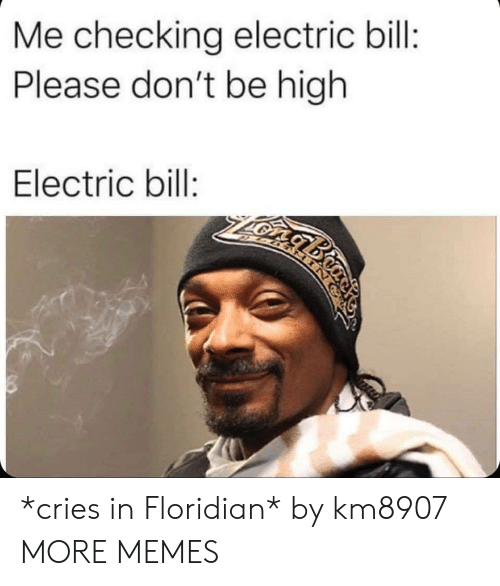 Dank, Memes, and Target: Me checking electric bill:  Please don't be high  Electric bill:  gbio *cries in Floridian* by km8907 MORE MEMES