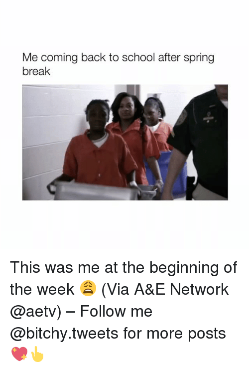 Girl Memes, Network, and A&e: Me coming back to school after spring  break This was me at the beginning of the week 😩 (Via A&E Network @aetv) – Follow me @bitchy.tweets for more posts 💖👆