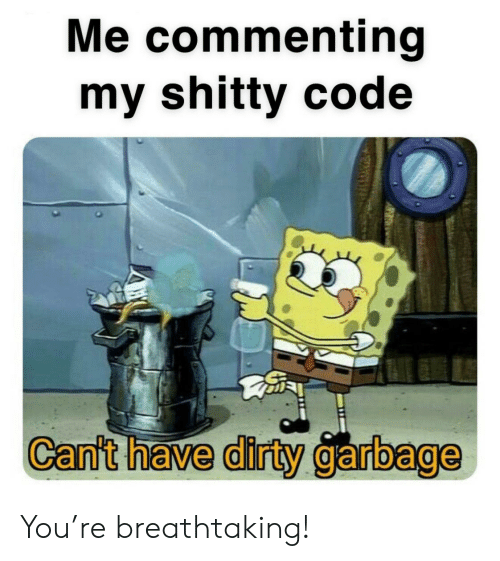 Dirty, Garbage, and Code: Me commenting  my shitty code  Can't have dirty garbage You're breathtaking!