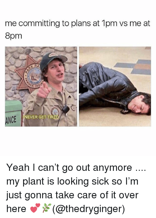 Memes, Yeah, and Sick: me committing to plans at 1pm vs me at  8pm  NEVER GET TI  NCE Yeah I can't go out anymore .... my plant is looking sick so I'm just gonna take care of it over here 💕🌿(@thedryginger)
