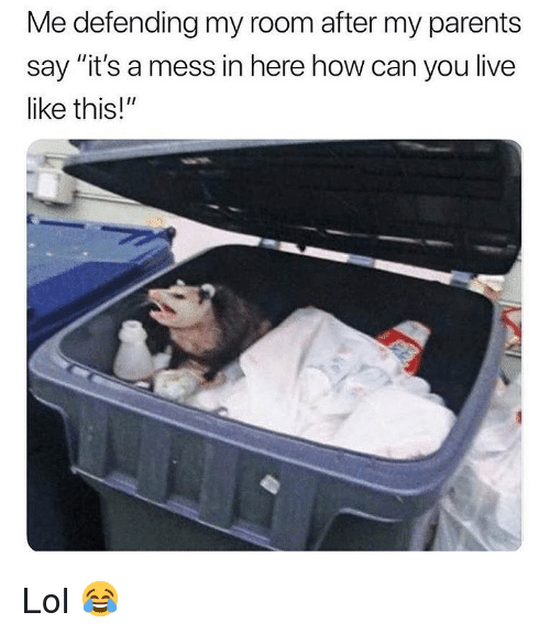 "Lol, Memes, and Parents: Me defending my room after my parents  say ""it's a mess in here how can you live  like this!"" Lol 😂"