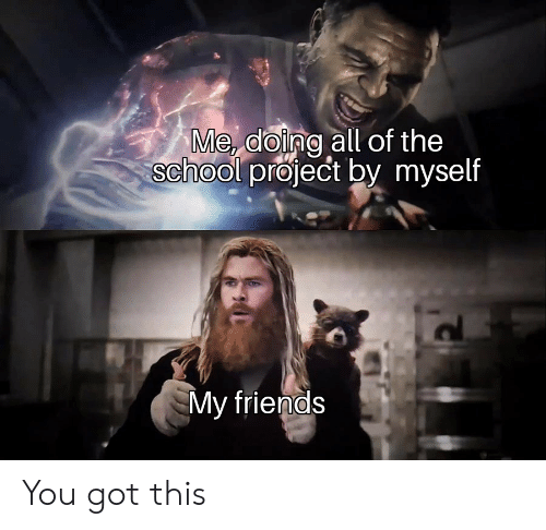 Friends, Reddit, and School: Me doing all of the  school project by myself  My friends You got this