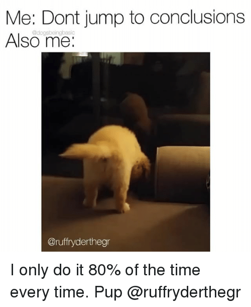 Memes, Time, and Pup: Me: Dont jump to conclusions  Also me:  @dogsbeingbasic  @ruffryderthegr I only do it 80% of the time every time. Pup @ruffryderthegr