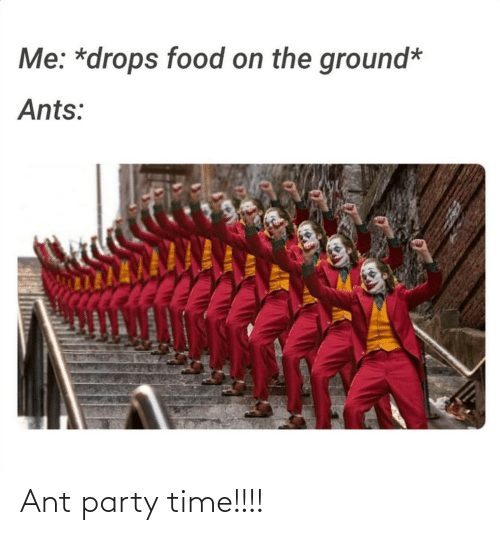 Me Drops Food On The Ground Ants Ant Party Time Food