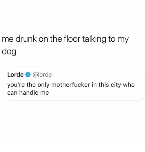 Drunk, Lorde, and Memes: me drunk on the floor talking to my  dog  Lorde @lorde  you're the only motherfucker in this city who  can handle me