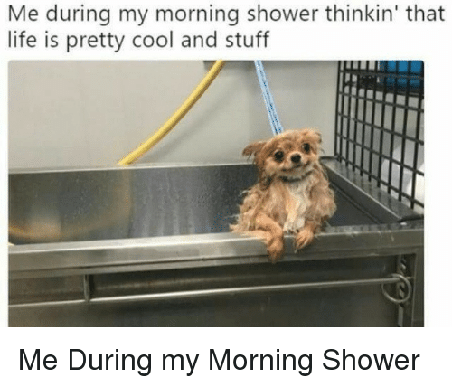 Life, Shower, and Cool: Me during my morning shower thinkin' that  life is pretty cool and stuff Me During my Morning Shower
