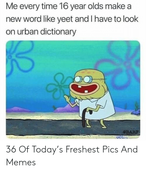 Memes, Urban Dictionary, and Dictionary: Me every time 16 year olds make a  new word like yeet and I have to look  on urban dictionary  BAR 36 Of Today's Freshest Pics And Memes