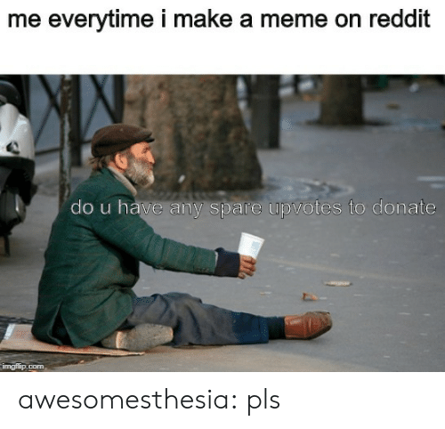 Meme, Reddit, and Tumblr: me everytime i make a meme on reddit  do u have any spare upvotes to donate  imgflip.com awesomesthesia:  pls