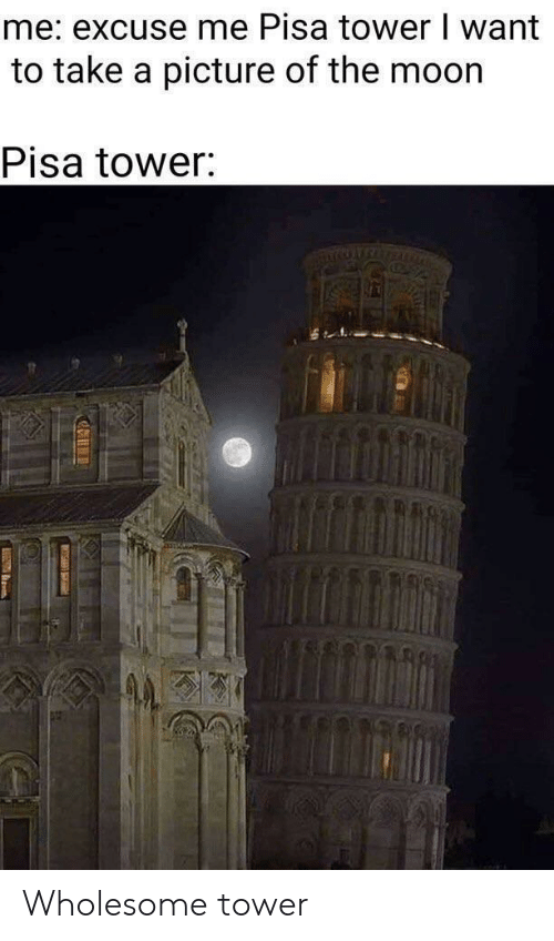 Wholesome, A Picture, and Picture: me: excuse me Pisa tower I want  to take a picture of the moor  Pisa tower Wholesome tower