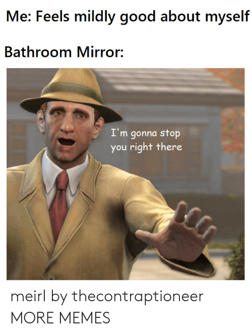 Dank, Memes, and Target: Me: Feels mildly good about myself  Bathroom Mirror:  I'm gonna stop  you right there meirl by thecontraptioneer MORE MEMES
