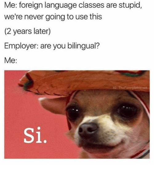 Introvert, Memes, and 🤖: Me: foreign language classes are stupid,  we're never going to use this  (2 years later)  Employer: are you bilingual?  Me:  IG: The Funny Introvert  Si,
