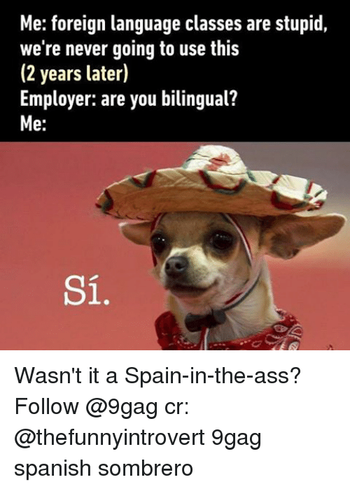 Memes, 🤖, and Foreigner: Me: foreign language classes are stupid  we're never going to use this  (2 years later)  Employer: are you bilingual?  Me  Si Wasn't it a Spain-in-the-ass? Follow @9gag cr: @thefunnyintrovert 9gag spanish sombrero