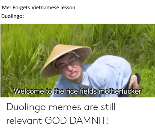 Me Forgets Vietnamese Lesson Duolingo Welcome to the Rice