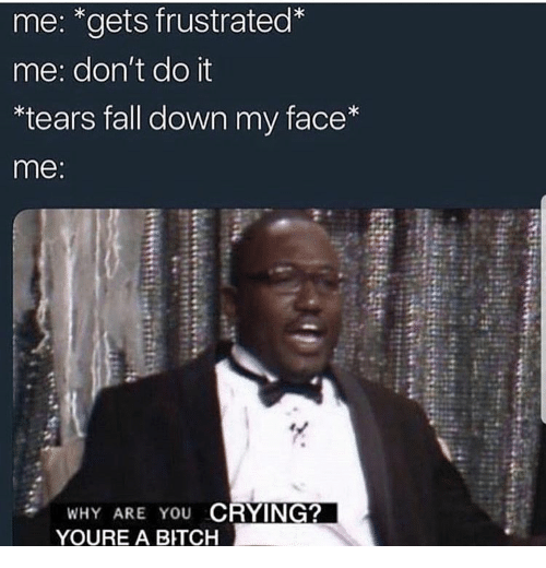 Bitch, Crying, and Fall: me: *gets frustrated*  me: don't do it  *tears fall down my face*  me:  WHY ARE YOU CRYING?  YOURE A BITCH