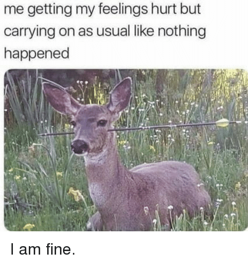 Fine, Like, and Nothing: me getting my feelings hurt but  carrying on as usual like nothing  happened I am fine.
