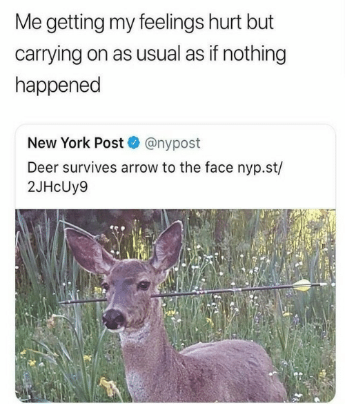 Deer, New York, and New York Post: Me getting my feelings hurt but  carrying on as usual as if nothing  happened  New York Post @nypost  Deer survives arrow to the face nyp.st/  2JHcUy9