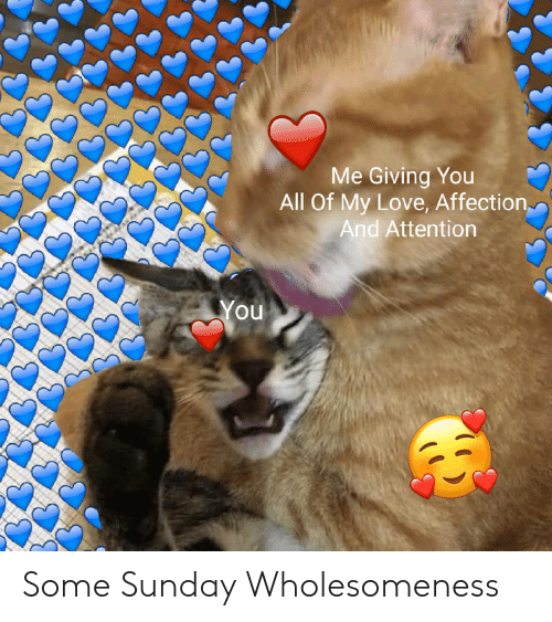 Me Giving You All Of My Love Affection And Attention You Some Sunday Wholesomeness Love Meme On Me Me