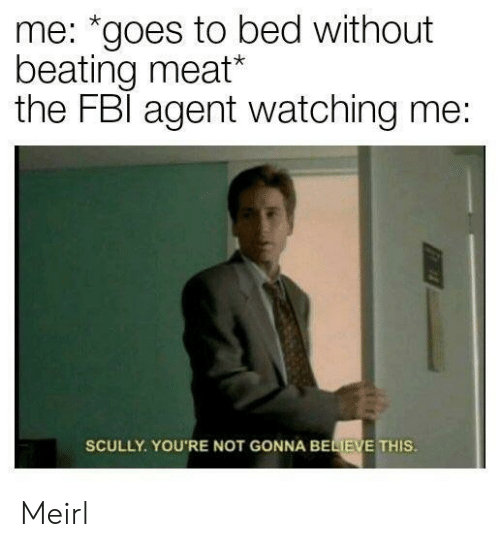"MeIRL, Believe, and Meat: me: ""goes to bed without  beating meat*  the FBl agent watching me:  SCULLY. YOU'RE NOT GONNA BELIEVE THIS Meirl"
