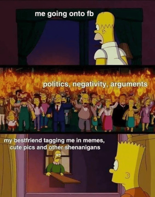 Cute, Memes, and Politics: me going onto fb  www  politics, negativity, arguments  my bestfriend tagging me in memes,  cute pics and other shenanigans