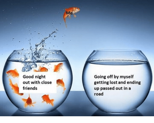 Friends, Lost, and Good: Me  Good night  out with close  friends  Going off by myself  getting lost and ending  up passed out in a  road