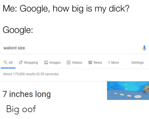 Me Google How Big Is My Dick? Google Wailord Size Images Q