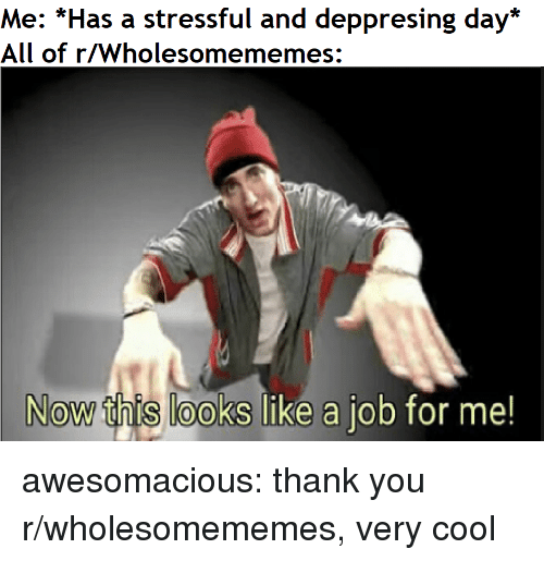 Tumblr, Thank You, and Blog: Me: *Has a stressful and deppresing day*  All of r/Wholesomememes:  Now this looks like a job for me awesomacious:  thank you r/wholesomememes, very cool