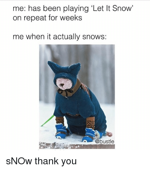 Memes, Thank You, and Snow: me: has been playing 'Let It Snow'  on repeat for weeks  me when it actually snows:  @bustle sNOw thank you
