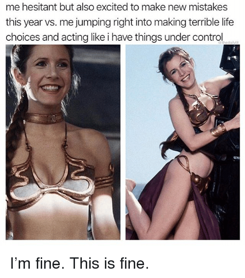 Life, Memes, and Control: me hesitant but also excited to make new mistakes  this year vs. me jumping right into making terrible life  choices and acting like i have things under control I'm fine. This is fine.