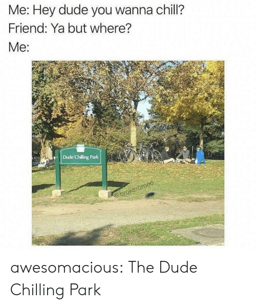 Chill, Dude, and Tumblr: Me: Hey dude you wanna chill?  Friend: Ya but where?  Me:  Dude Chilling Park  @brokeromeo awesomacious:  The Dude Chilling Park