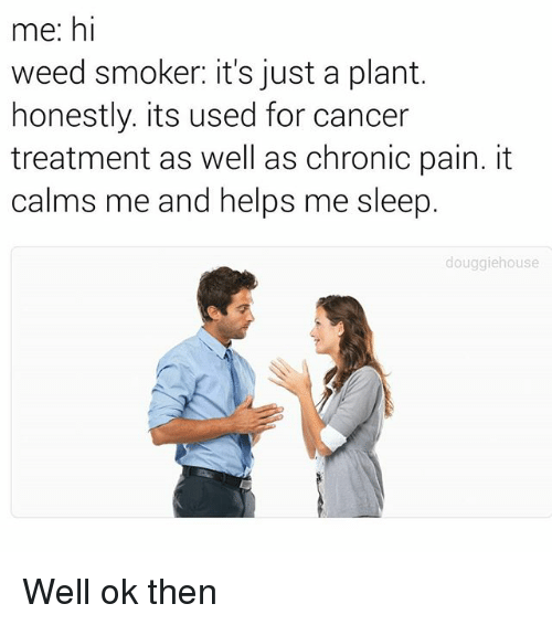 Memes, Weed, and Cancer: me: hi  weed smoker: it's just a plant.  honestly. its used for cancer  treatment as well as chronic pain. it  calms me and helps me sleep.  douggiehouse Well ok then