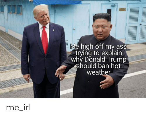 Ass, Donald Trump, and Trump: Me high off my ass  trying to explain  why Donald Trump  should ban hot  weather me_irl