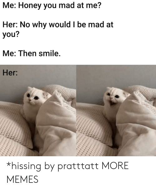 Dank, Memes, and Target: Me: Honey you mad at me?  Her: No why would I be mad at  you?  Me: Then smile.  Her: *hissing by pratttatt MORE MEMES