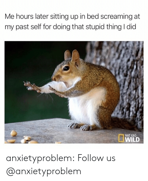 Target, Tumblr, and Blog: Me hours later sitting up in bed screaming at  my past self for doing that stupid thing I did  WILD  NAT GEO anxietyproblem:  Follow us @anxietyproblem