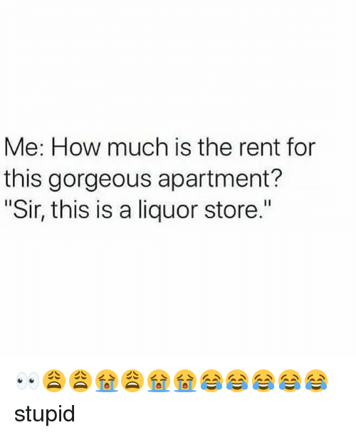 me how much is the rent for this gorgeous apartment sir this is a liquor store. Black Bedroom Furniture Sets. Home Design Ideas