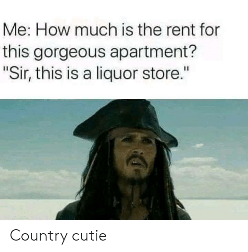 """Memes, Gorgeous, and Liquor Store: Me: How much is the rent for  this gorgeous apartment?  Sir, this is a liquor store."""" Country cutie"""