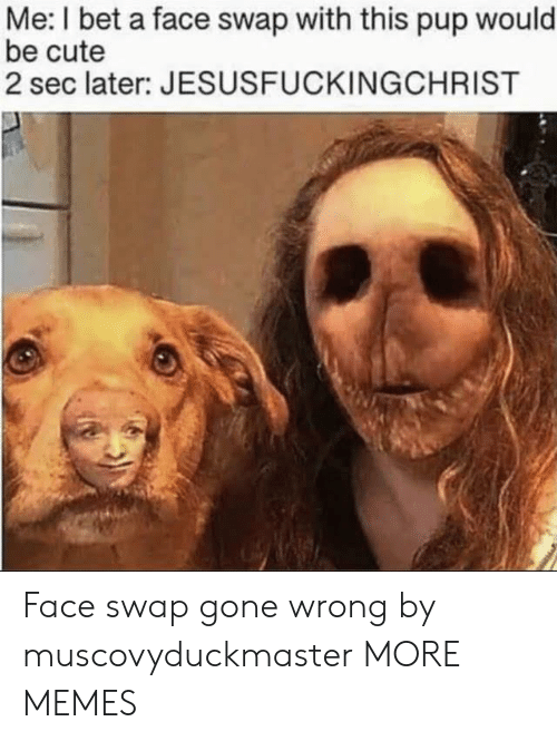 Cute, Dank, and I Bet: Me: I bet a face swap with this pup would  be cute  2 sec later: JESUSFUCKINGCHRIST Face swap gone wrong by muscovyduckmaster MORE MEMES