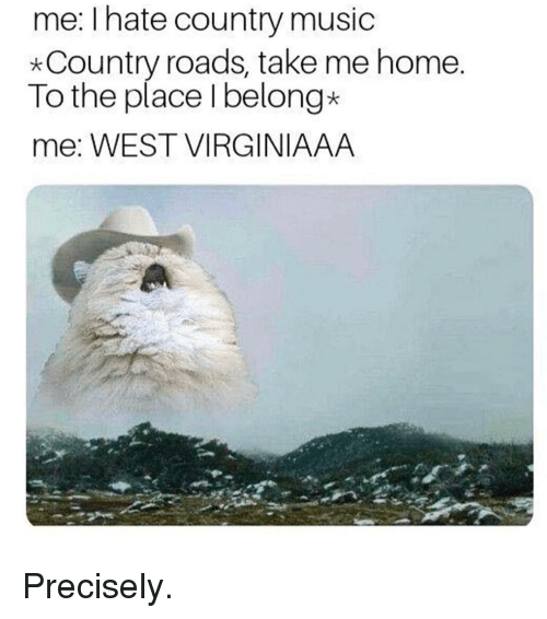 Spoilers - Everybody hates country... but you know there's ...