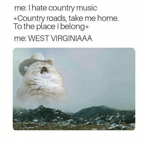 Memes, Music, and Country Music: me: I hate country music  *Country roads, take me home  To the place I belong*  me: WEST VIRGINIAAA