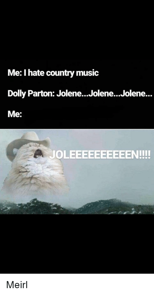 Music, Country Music, and MeIRL: Me: I hate country music  Dolly Parton: Jolene...Jolene...Jolene...  Me:  JOLEEEEEEEEEEN!!! Meirl