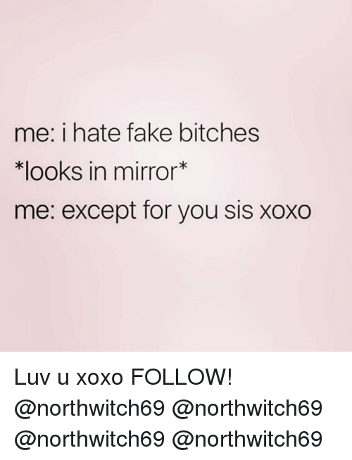 Fake, Memes, and Mirror: me: i hate fake bitches  Klooks in mirror*  me: except for you sis xoxo Luv u xoxo FOLLOW! @northwitch69 @northwitch69 @northwitch69 @northwitch69