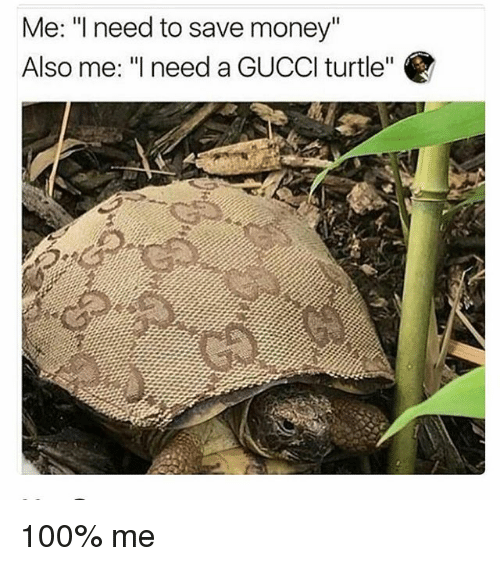 """Anaconda, Memes, and Money: Me: """"I need to save money""""  Also me: """"l need a GUCCl turtle"""" 100% me"""