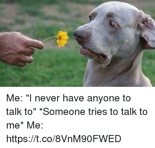 """Girl Memes, Never, and Me Me: Me: """"I never have anyone to talk to""""  *Someone tries to talk to me*   Me: https://t.co/8VnM90FWED"""